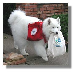 Dogs Carrying Groceries